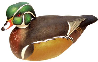 wood duck drake decoy