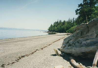 Lummi Island beach ~ photo by Luther Allen