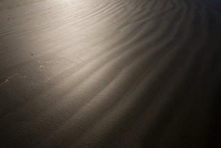 Sun on wet sand by J. Evan Kreider