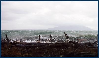 Lummi Island stormy seas