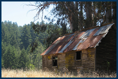 old shack photo by Tom Mangan