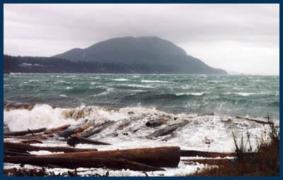 Lummi Island shore